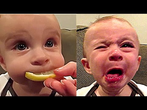 Image of: Try Not Cute Funny Baby Compilation Kids Vines Funny Kids Videos Reviewgalacom Funny Baby Videos Archives Reviewgalacom Book Review Product
