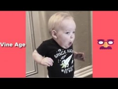 America's Funniest Home Videos  – Funny Videos