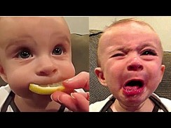 Cute Funny Baby Compilation Kids Vines – Funny Kids Videos.