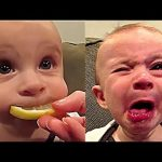 Cute Funny Baby Compilation Kids Vines Videos.